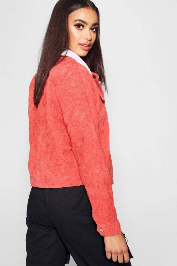 A padded collar jacket